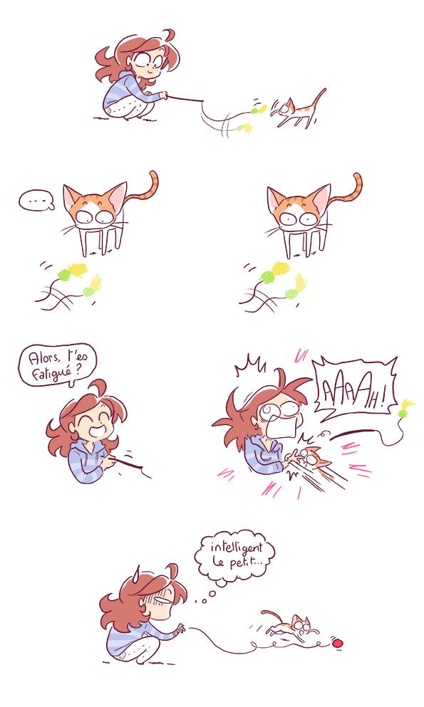 jeu jouet chat