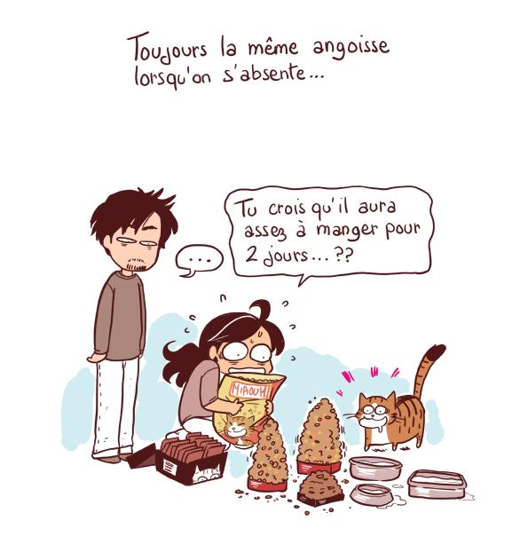 croquettes pour chat